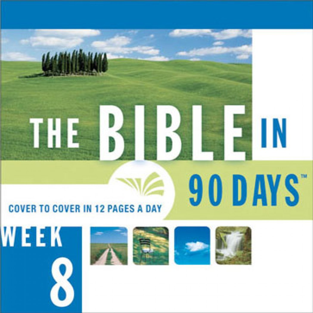 The Bible in 90 Days: Week 08