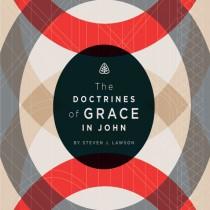 The Doctrines of Grace in John Teaching Series