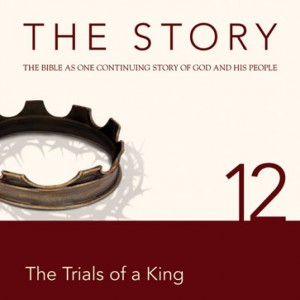 The Story Chapter 12 (NIV)