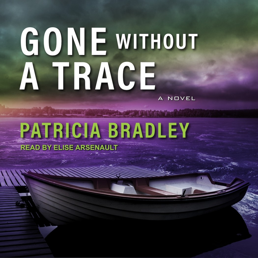 Gone without a Trace (Logan Point, Book #3)