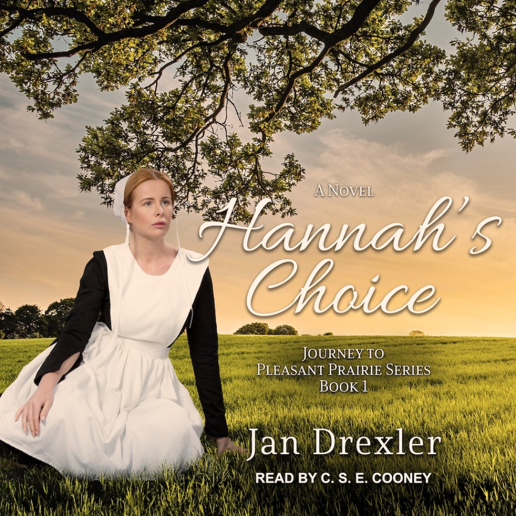 Hannah's Choice (Journey to Pleasant Prairie, Book #1)