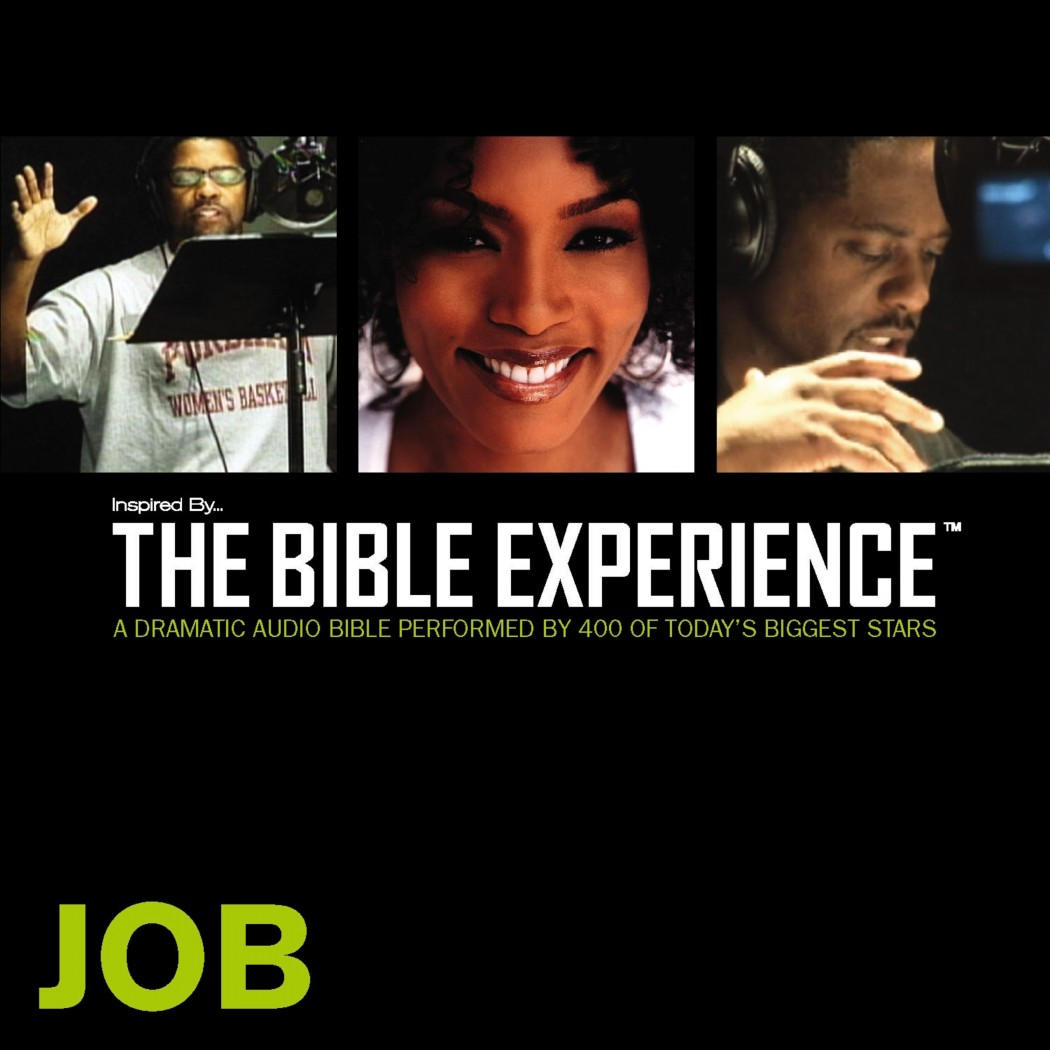 Inspired By … The Bible Experience Audio Bible - Today's New International Version, TNIV: (17) Job