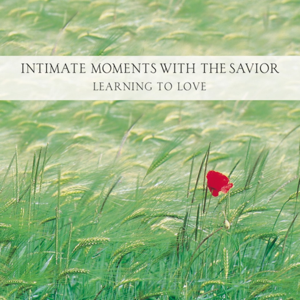 Intimate Moments with the Savior (Moments with the Savior Series)