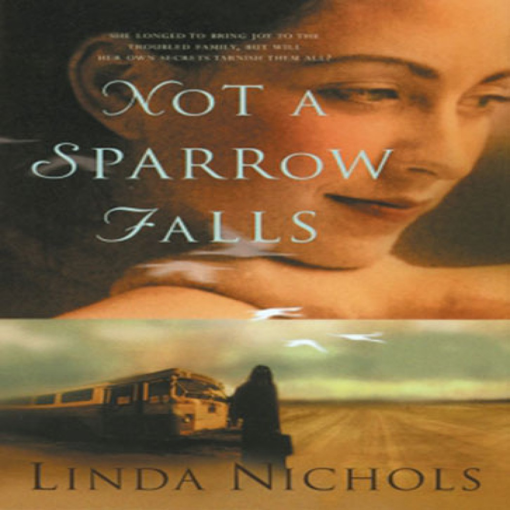 Not a Sparrow Falls (The Second Chances Collection, Book #1)