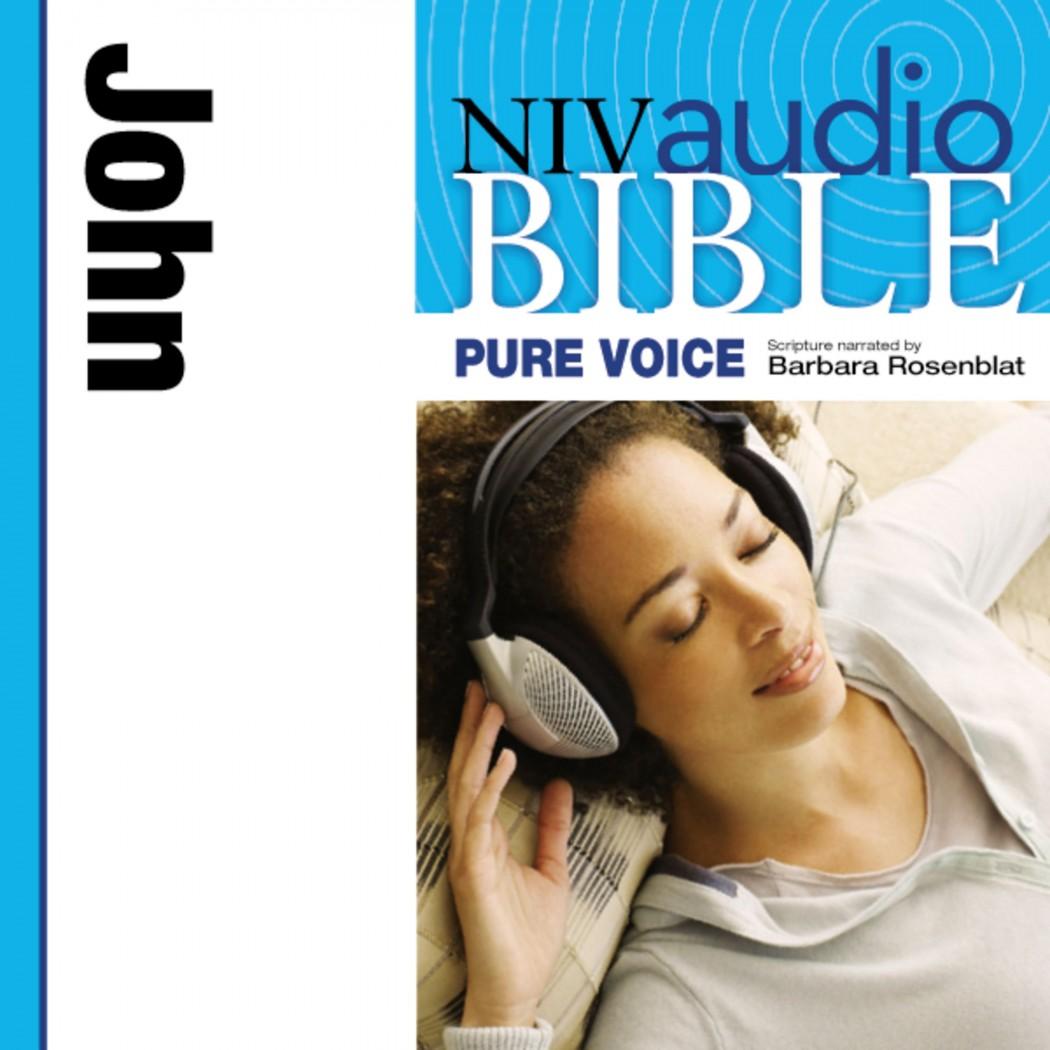 Pure Voice Audio Bible - New International Version, NIV (Narrated by Barbara Rosenblat): (04) John