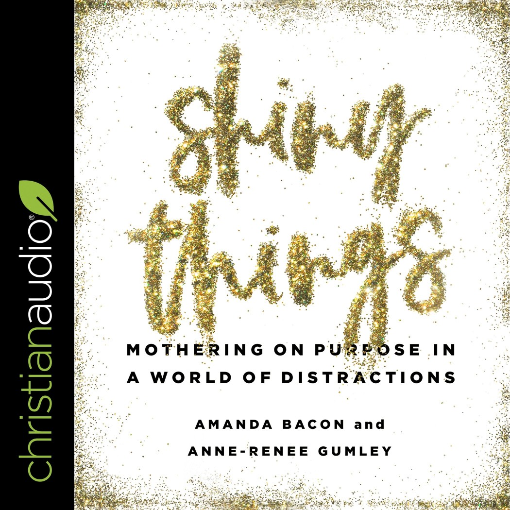 Shiny Things: Mothering on Purpose in a World of Distractions