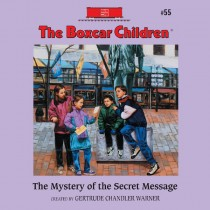 The Mystery of the Secret Message