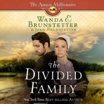 The Divided Family (The Amish Millionaire, Book #5)