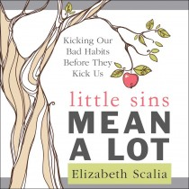 Little Sins Mean a Lot