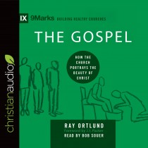 The Gospel (9Marks Series)