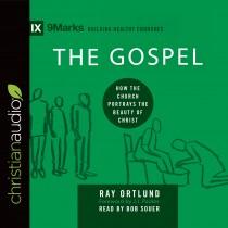 The Gospel (9Marks Series)