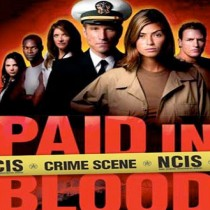 Paid in Blood (Military NCIS Series, Book #1)