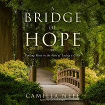 A Bridge of Hope