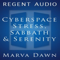 Cyberspace Stress, Sabbath, and Serenity