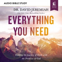 Everything You Need (Audio Bible Studies)