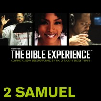Inspired By … The Bible Experience Audio Bible - Today's New International Version, TNIV: (09) 2 Samuel