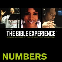 Inspired By … The Bible Experience Audio Bible - Today's New International Version, TNIV: (04) Numbers
