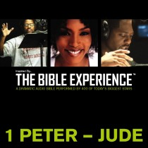 Inspired By … The Bible Experience Audio Bible - Today's New International Version, TNIV: (39) 1 and 2 Peter; 1, 2, and 3 John; and Jude