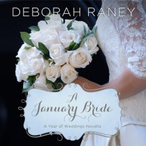 A January Bride (A Year of Weddings Novella, Book #2)