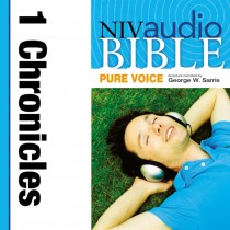 Pure Voice Audio Bible - New International Version, NIV (Narrated by George W. Sarris): (12) 1 Chronicles