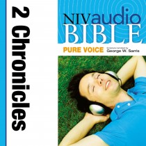 Pure Voice Audio Bible - New International Version, NIV (Narrated by George W. Sarris): (13) 2 Chronicles