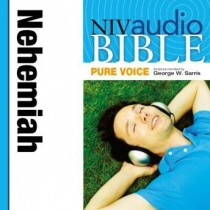 Pure Voice Audio Bible - New International Version, NIV (Narrated by George W. Sarris): (15) Nehemiah