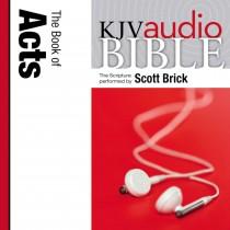 Pure Voice Audio Bible - King James Version, KJV: (31) Acts