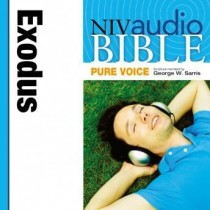 Pure Voice Audio Bible - New International Version, NIV (Narrated by George W. Sarris): (02) Exodus