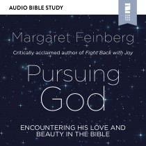 Pursuing God (Audio Bible Studies)