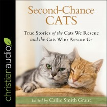 Second-Chance Cats