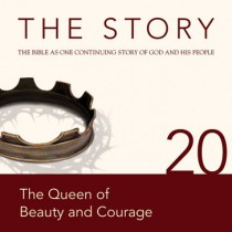 The Story Chapter 20 (NIV)