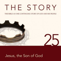 The Story Chapter 25 (NIV)