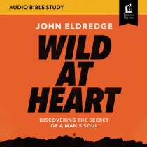 Wild at Heart Updated: Audio Bible Studies