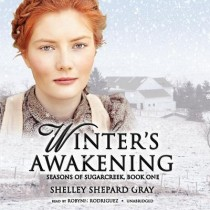 Winter's Awakening (Seasons of Sugarcreek, Book #1)