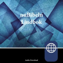 Zondervan nuBibeln, Audio Download