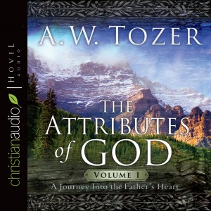 The Attributes Of God V1: A Journey Into The Father's Heart