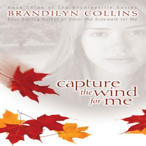 Capture the Wind for Me (The Bradleyville Series, Book #3)