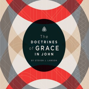 The Doctrines of Grace in John Teaching Series