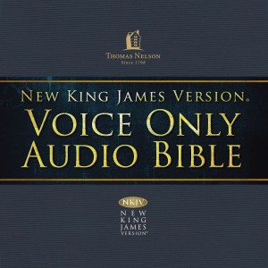 Voice Only Audio Bible - New King James Version, NKJV (Narrated by Bob Souer): (15) Job