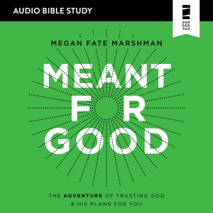 Meant for Good (Audio Bible Studies)