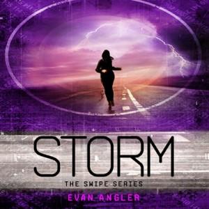 Storm (Swipe Series, Book #3)