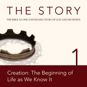 The Story Chapter 01 (NIV)