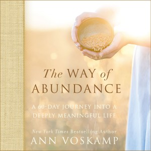 The Way of Abundance