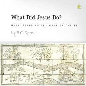 What Did Jesus Do? Teaching Series