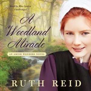 A Woodland Miracle (The Amish Wonders Series, Book #2)
