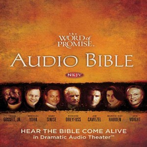 The Word of Promise Audio Bible