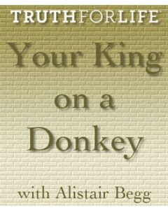 Your King on a Donkey