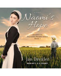 Naomi's Hope (Journey to Pleasant Prairie, Book #3)