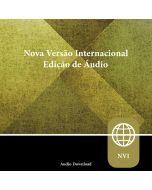 Zondervan Nova Versão Internacional, Audio Download