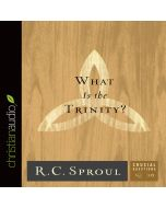 What Is the Trinity? (Series: Crucial Questions, Book #10)